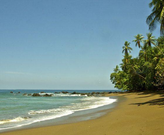 Voici l'image d'une plage dont vous profiterez lors d'un voyage sur mesure, d'un autotour ou d'un circuit organisé par Arawak Experience, votre agence locale de tourisme pour un voyage au Costa Rica