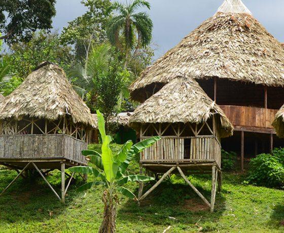 Voici l'image du tourisme rural que vous pourrez expérimenter lors d'un voyage sur mesure, d'un autotour ou d'un circuit organisé par Arawak Experience, votre agence locale de tourisme pour un voyage au Costa Rica