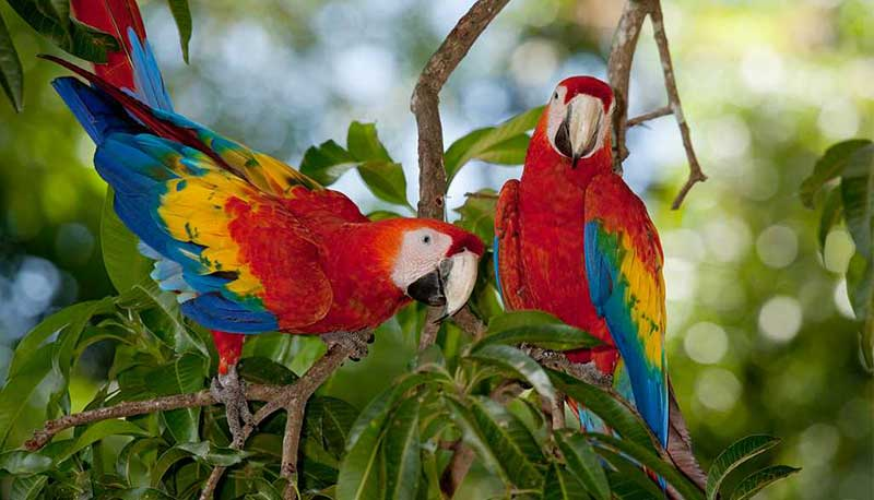 tourisme solidaire costa rica