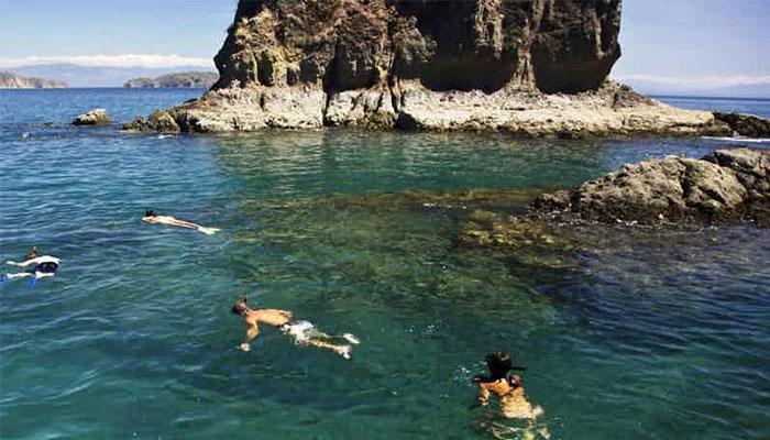 snorkeling tortuga