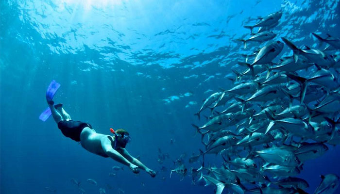 snorkeling caño