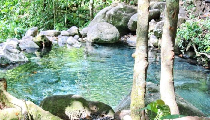 eaux thermales pittier
